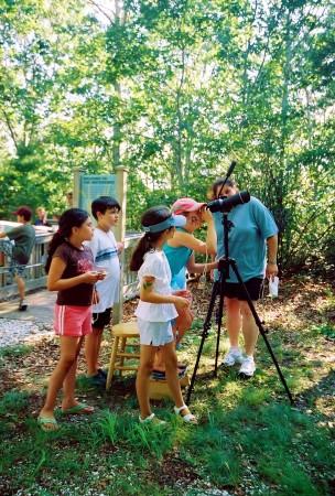 Osprey viewing w kids
