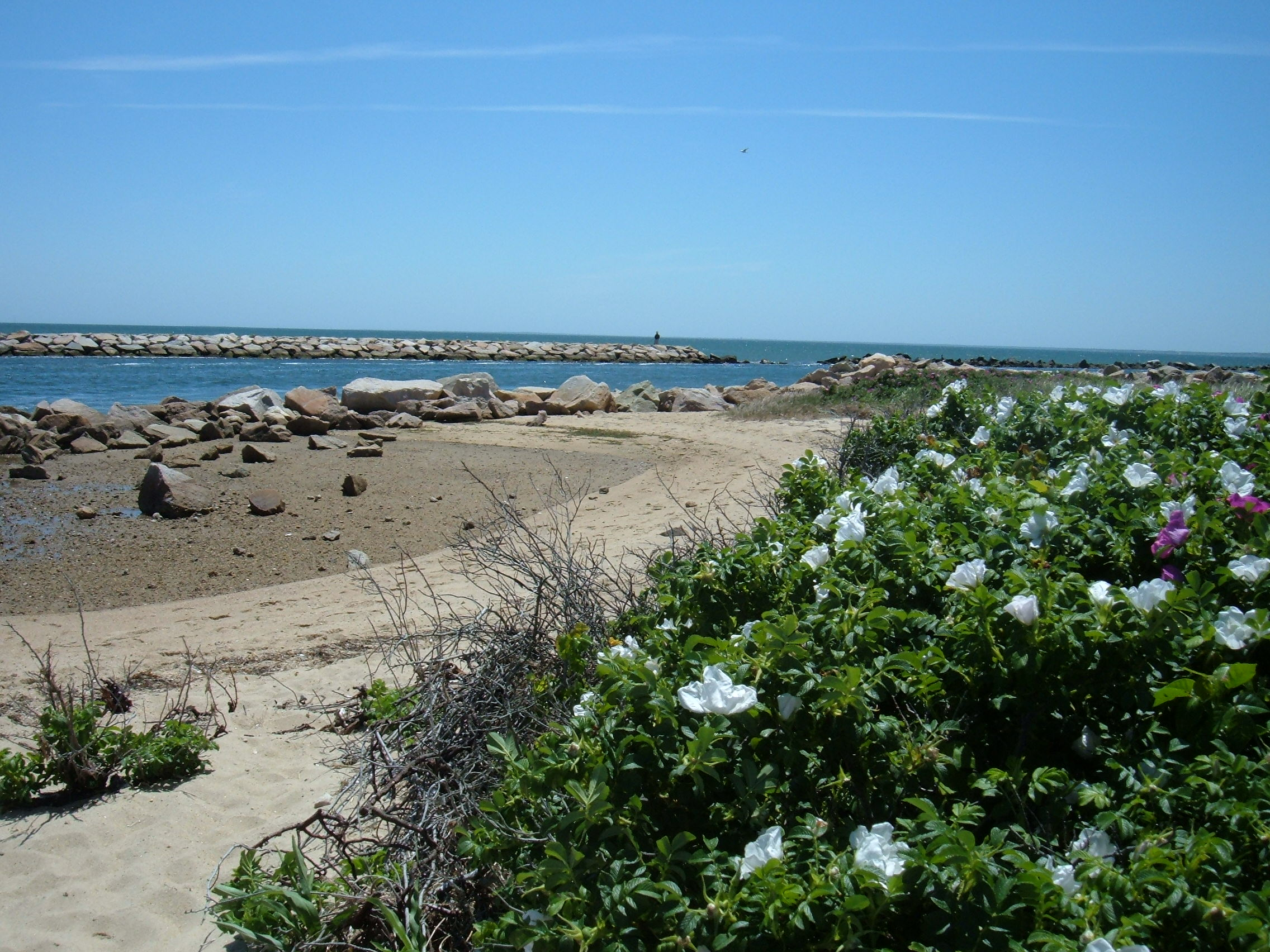 Camping Sites Near The Beach Open In Sept