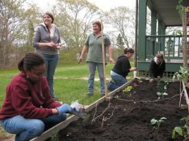 Group_Gardening