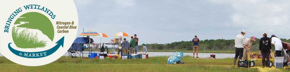 Bringing Wetlands to Market: Nitrogen & Blue Carbon