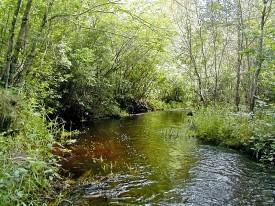 map-tour-quashnet-river