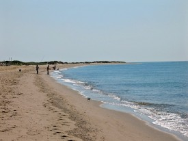 South Cape Beach State Park on